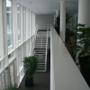 rathausphilippsburgtreppenhaus2004